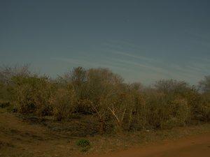 Província de Maputo 4 de setembro 1