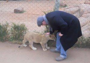Eduardo acaricia um leãozinho