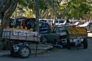 carrinhos de frutas