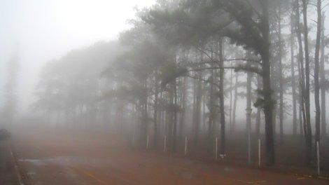 Fronteira com neblina